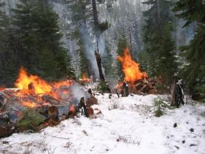 70070-prescribedfire.jpg