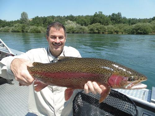 71575-dq_sac_river_fish.jpg