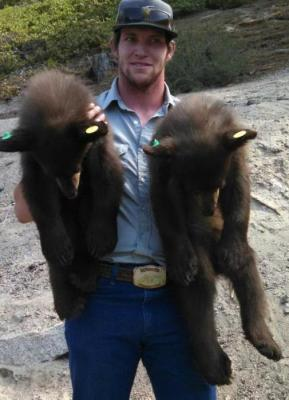 71682-7-16-14_bear_cubs_at_kingsbury_grade.jpg