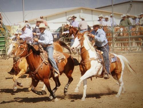 71834-fair_rodeo1.jpg
